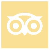 Tripadviser icon